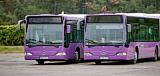 Augusztus 1-től változik a V-Busz menetrendje pár vonalon